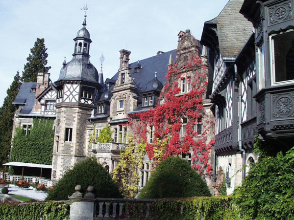 Schloss im Herbstlaub