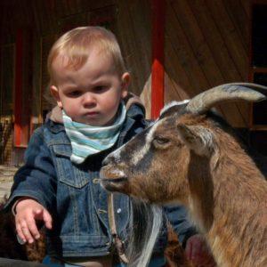 Kleinkind mit Ziege