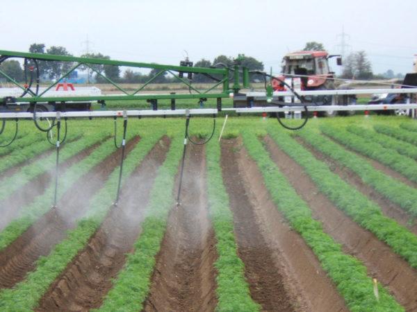 Die Anwendung von Pflanzenschutzmitteln ist seit 2012 nur noch mit Sachkundeausweis möglich