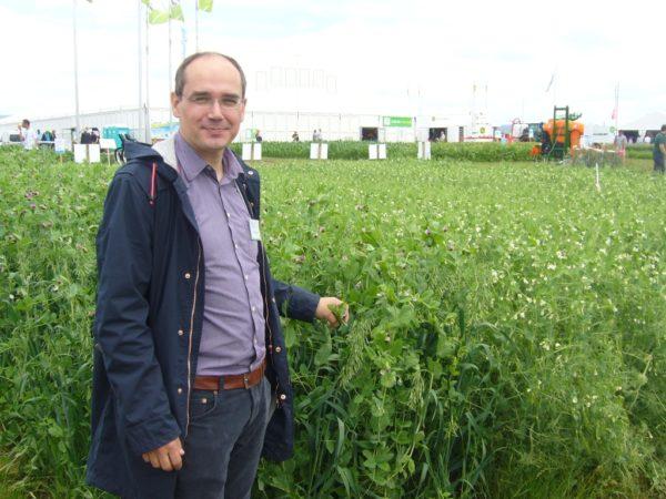 Der Koordinator des Demonstrationsnetzwerkes Ulrich Quendt vor einem Ackerbohnenschlag