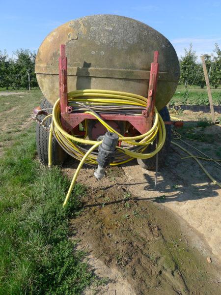 In extrem trockenen Sommern müssen Obstplantagen oft künstlich bewässert werden.