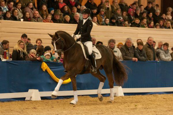 Ben Kingsley mit Sabrina Gessmann auf der Hengstschau in Dillenburg