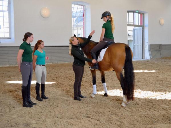 Nur mit dem richtigen Sitz kann der Reiter richtig auf das Pferd einwirken