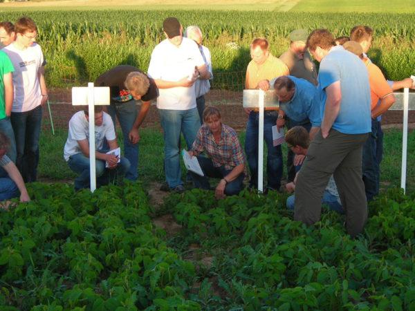 Eine Gruppe Menschen beugt sich über ein Versuchsfeld.