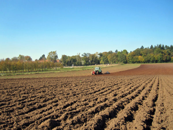Die Böden geraten global, aber auch in Deutschland zunehmend unter Druck.