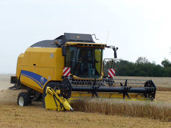 Mähdrescher bei der Weizenernte