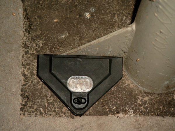 Hausmäuse verursachen durch Verschmutzung große Schäden im Lager.