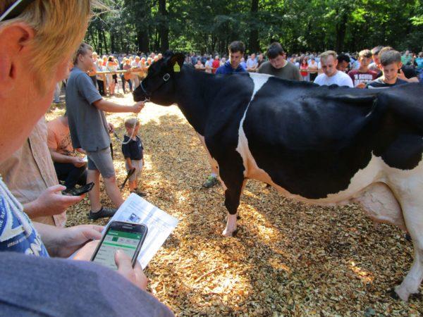 Tierbeurteilung mit Smartphone App