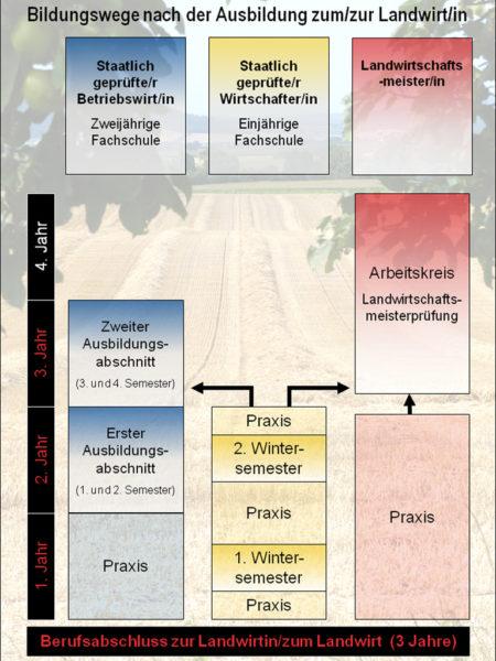 Grafik Bildungswege nach der Ausbildung zum Landwirt