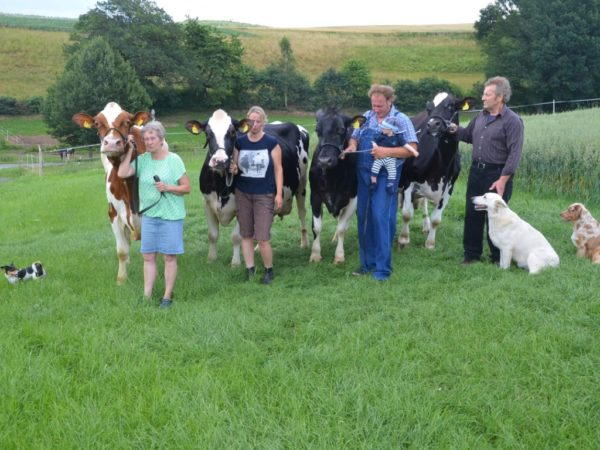 Hunderttausend-Liter-Kühe Familie Hauck
