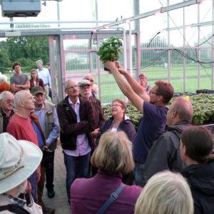 Michael Kloss präsentiert den Besuchern Topfbasilikum im Spezialübertopf mit Dochtbewässerung