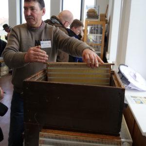 Vladimir Strasser stellt die Funktionsweise von Bienenwaben vor