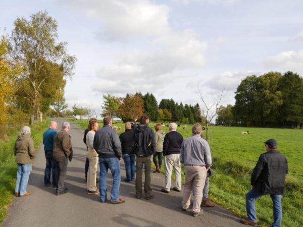 Einsatz einer Schafherde in der Naturschutzpflege