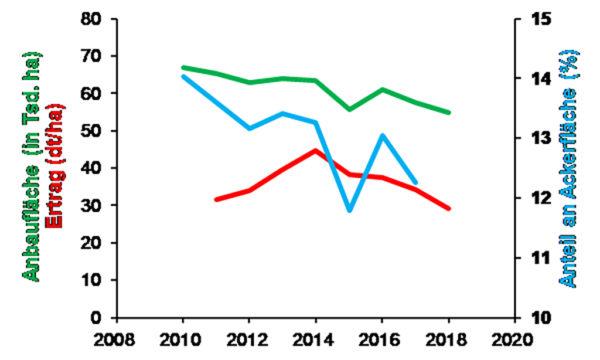 Abb. 1: Veränderung der Anbaufläche von Raps/Rübsen (in Tsd. ha) in Hessen, Anteil Raps/Rübsen an der Ackerfläche (%) und Rapsertrag (dt/ha). Daten: Statistisches Landesamt, Destatis (Ertrag für 2018 vorläufig geschätzt).