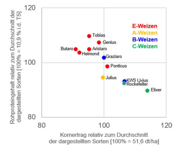 Abbildung 1a: Rohproteingehalt und Kornertrag jeweils relativ zum Durchschnitt der dreijährig (2016-2018) an allen drei Standorten geprüften Sorten [n=11]