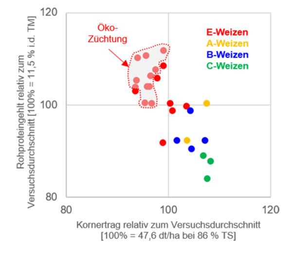 Abbildung 1b: Rohproteingehalt und Kornertrag jeweils relativ zum Durchschnitt der dreijährig (2016-2018) am Standort Alsfeld-Liederbach geprüften Sorten [n=27]