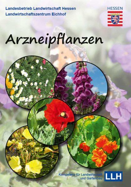 Broschüre Arzneipflanzen