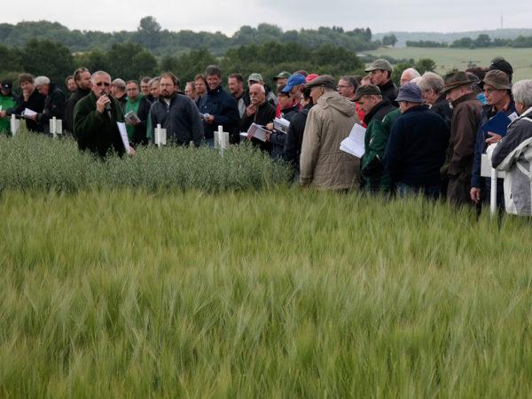 Feldbegehung Alsfeld-Liederbach